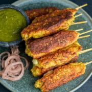 Chicken Seekh Kebabs Close up with no Garnish