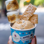 New Territories and Stuffed Puff Summer Ice Cream Collab