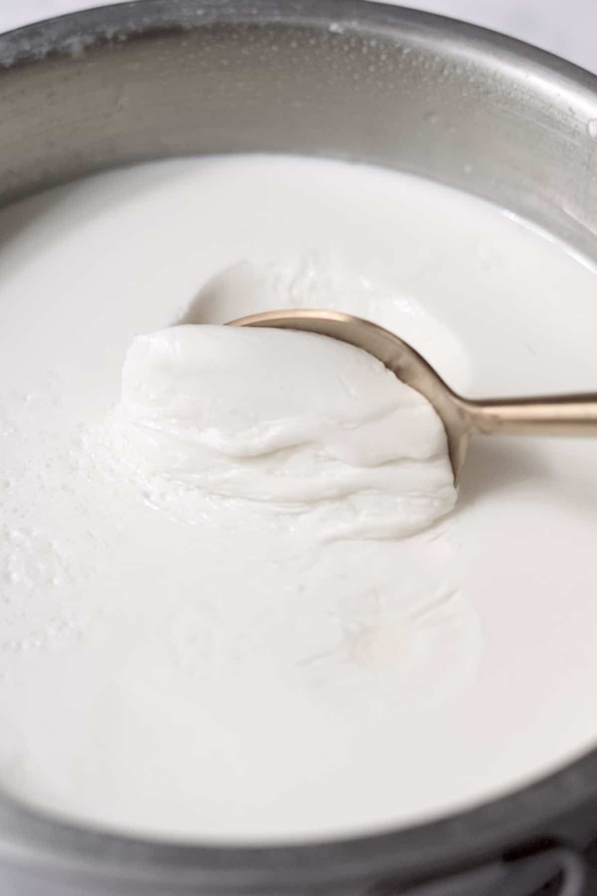 scooping the set creamy dahi with a spoon